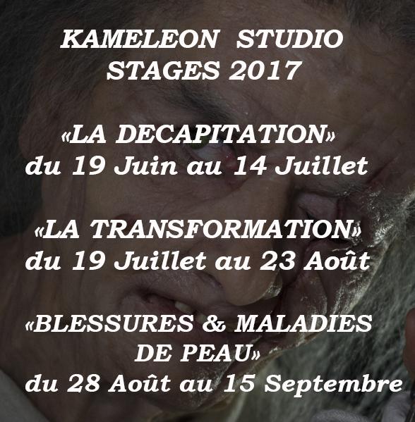plaquette-2017